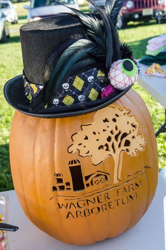 A Carved Pumpkin Promoting the Wagner Farm Arboretum